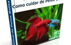 Peixe Betta Saudável - Manual Completo