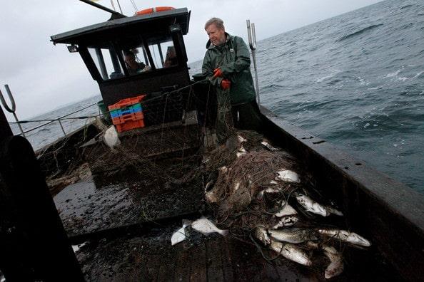 Pescadores do mar