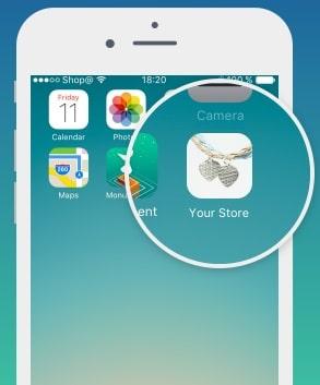 criar app da loja com Ecwid
