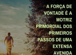A força de vontade é a motriz primordial dos primeiros passos de uma extensa avenida chamada vida. - Ênio Giacomini de Sales