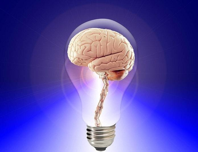 função cerebral saudável
