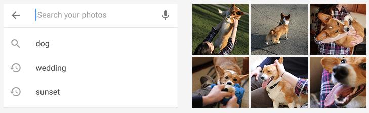 Google Fotos - Identificação