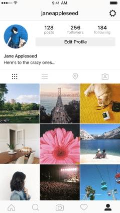 Instagram - Perfil