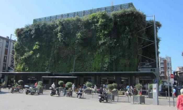 Mercado Les Halles de Avignon
