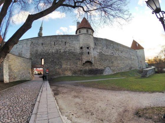 Muralha medieval de Tallinn