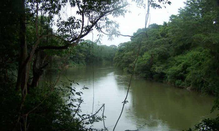 Parque Nacional Guanacaste de belmopan