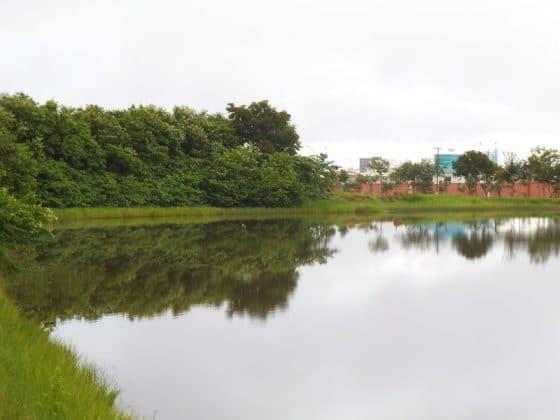 Parque Tia Nair