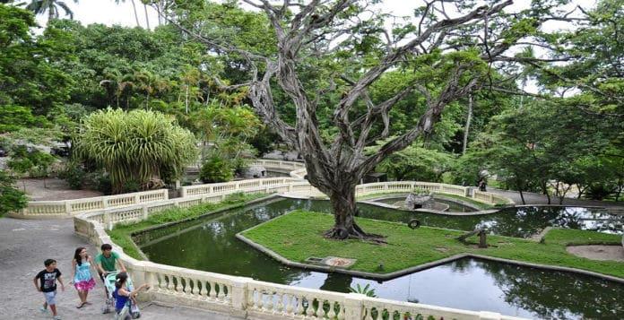 Parque Zoobotânico Arruda Câmara (Bica) - João Pessoa-PB