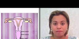 anéis vaginais